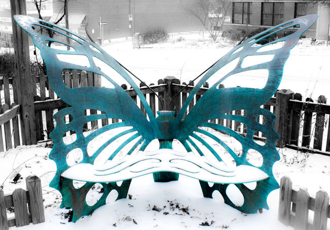 B&w Bench Blizzard Blue Butterfly City Day Durham Glow Glowing Jonas Metal Metal Work No People North Carolina Outdoors Snow Snow Covered Snowy Southeast Turquoise Winter