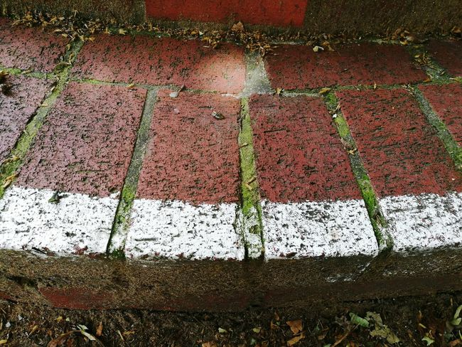 Red Brick Step Floor Ground Up Towards From Above  Manchester Suburbs Curve Exposed To The Elements Street Down Moss White Lines White Stripe