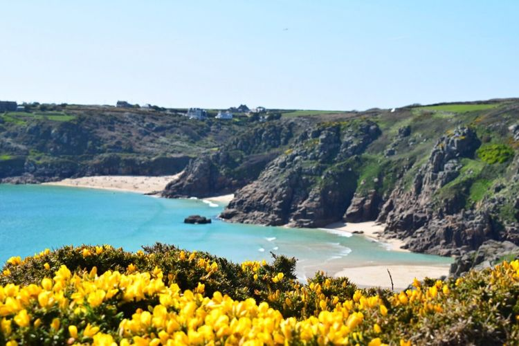 Cornwall Uk Cornwall Walks Coastline Clear Sky Sea Landscape View Of Beaches View From Above Porthcurno Beach Pednevounder Beach Near Lands End Start Of Summer Tourist Spot Holidays Paint The Town Yellow
