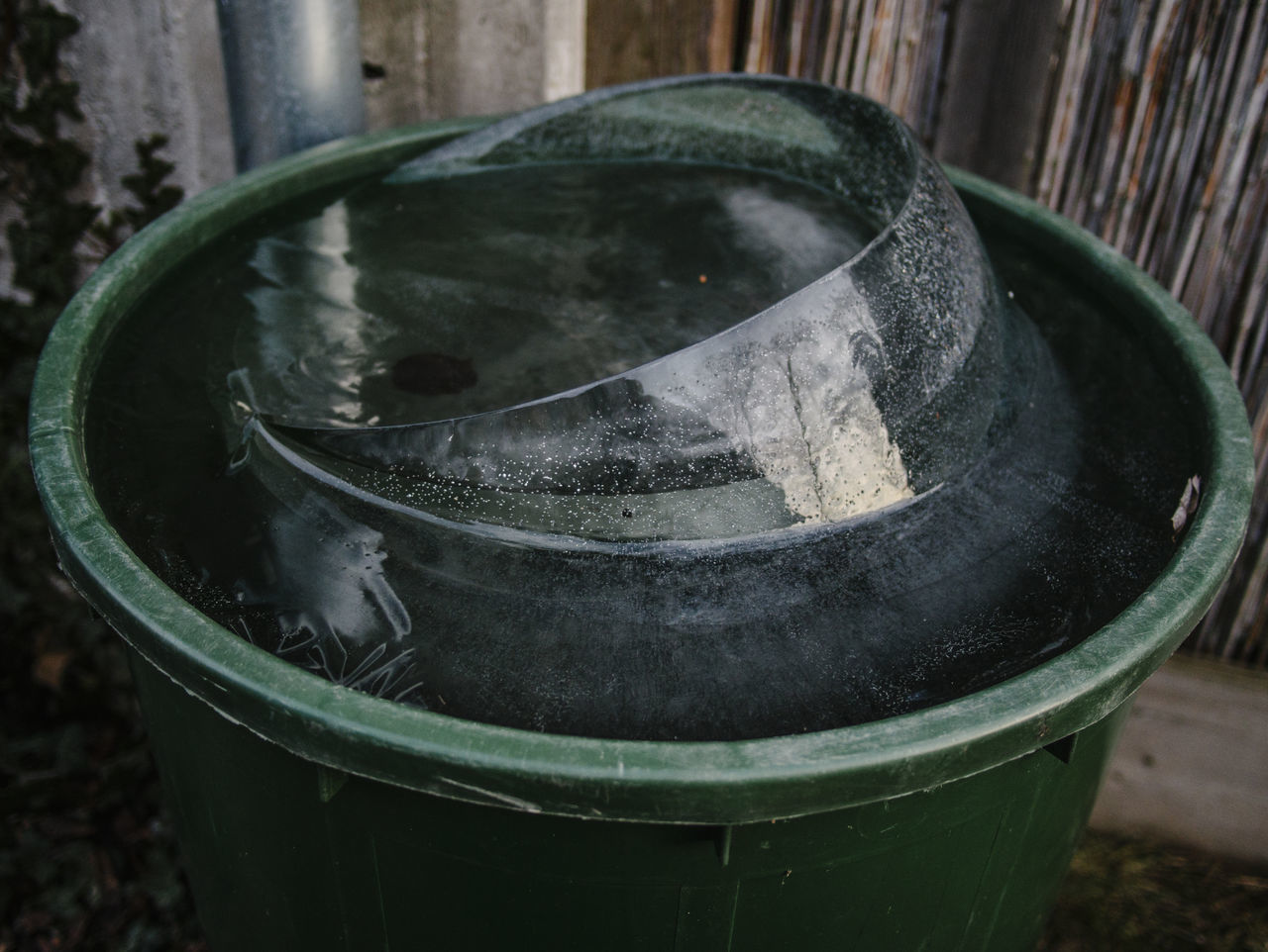 close-up, metal, container, no people, focus on foreground, bucket, still life, indoors, nature, old, abandoned, day, high angle view, water, wood - material, cylinder, plant, barrel, single object