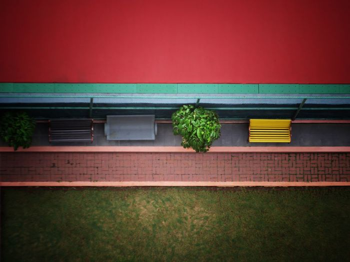 High angle view of plants and benches