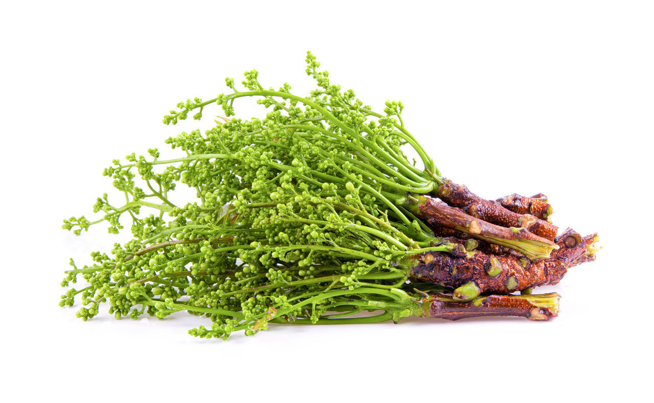 white background, studio shot, food and drink, food, freshness, green color, healthy eating, wellbeing, vegetable, cut out, no people, still life, indoors, ready-to-eat, close-up, meat, bean, copy space, asparagus, green bean
