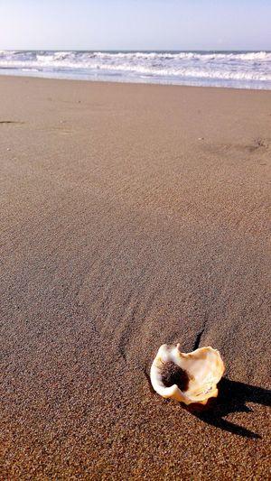 spiaggia Sea