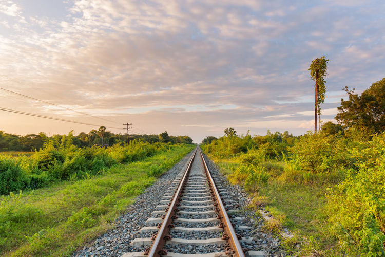 Railroad track amidst plants against sky