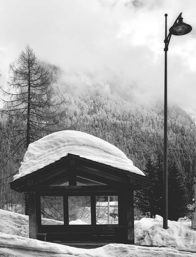 Bus stop Black And White Snowcapped Bus Stop Winter Snow Cold Temperature Weather Tree Nature Outdoors Day Mountain No People Frozen Built Structure Architecture Landscape Beauty In Nature Tranquility
