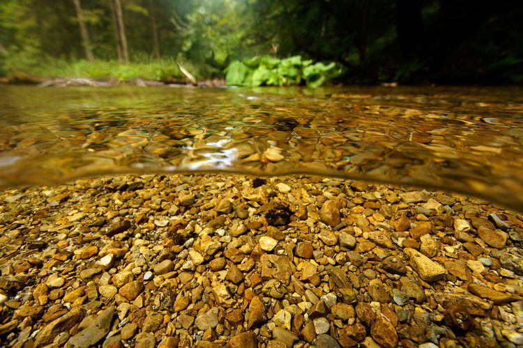 Surface level of stones in water