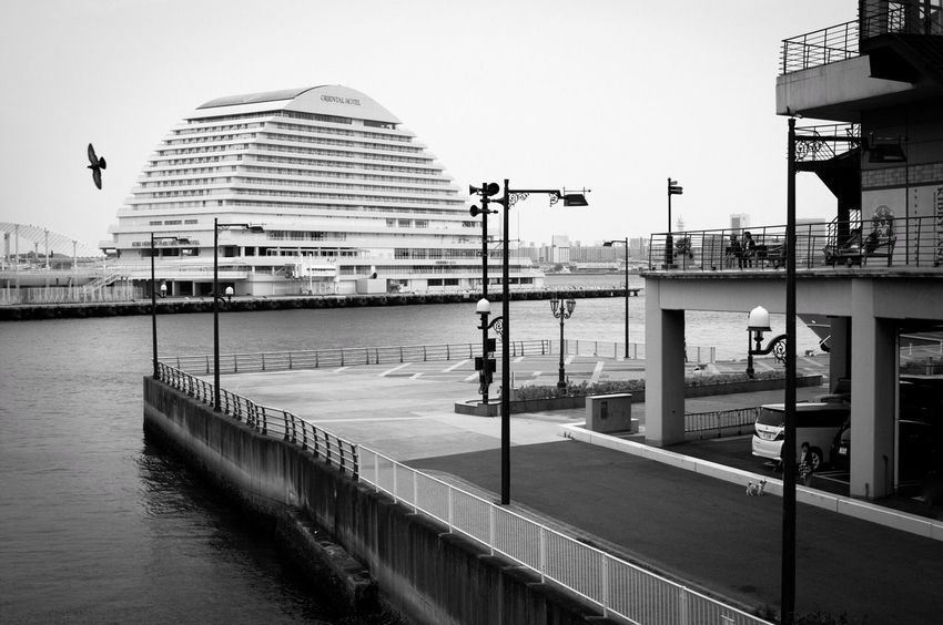 Gull Sea Sea And Sky Street Light Hotel Whale Water Front  Street Photography Black And White Streetphotography Kobe,japan