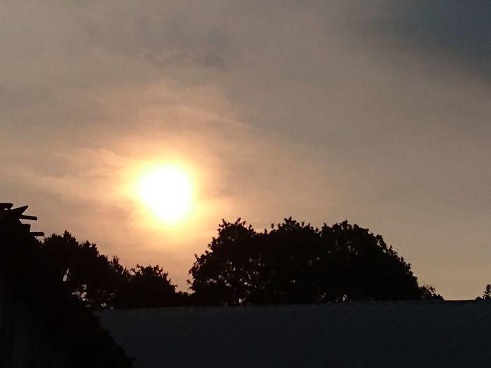 sun Sunset A