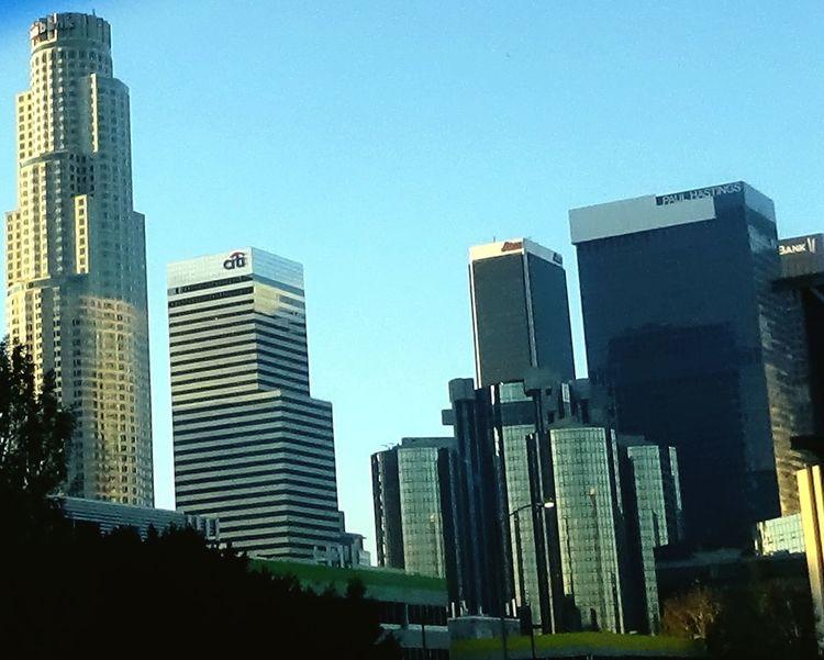 Los Angeles Skyline Downtown Los Angeles City Of Angels City Of Falling Angels Downtown L.A Sky Scraper