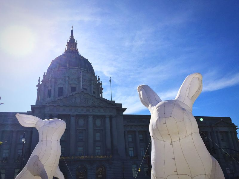 San Francisco City Hall Intrude San Francisco From My Point Of View Easter Spring Inflatables Rabbits Sunshine