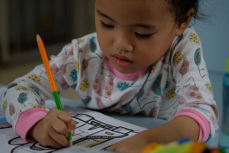 Activity of home school is painting Child Childhood Girls One Person Females Pencil Indoors  Women Learning Headshot Cute Innocence Portrait Offspring Pen Drawing - Activity Real People School Supplies Studying Colored Pencil