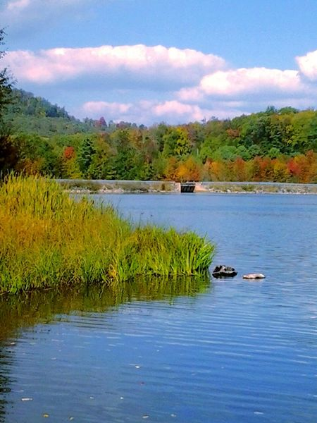 Beautiful Autumn ..at the Lake .. EyeEmBestEdits .. Water_collection ..