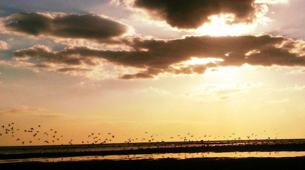 Taking Photos Relaxing Enjoying Life Hello World Beach Romantic Naturelovers Sun Sunset Clouds And Sky