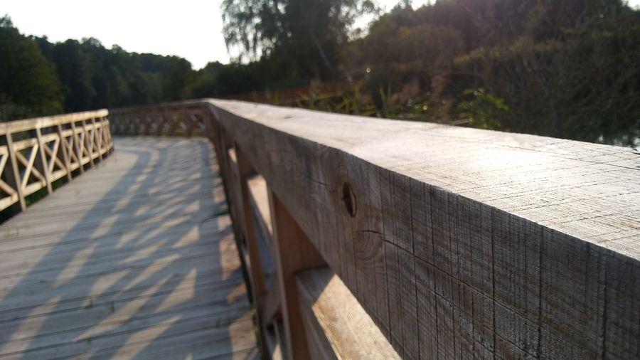 Close-up of bridge on footpath