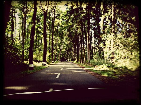 Forest Road Luxembourg