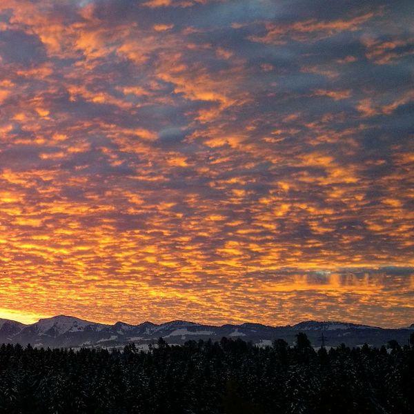 Sunrise Sunrise Silhouette Dramatic Sky Cloudsporn Naturephotography Naturelover Alps Germany Hochgrat Steibis Autumn Authentic Moments