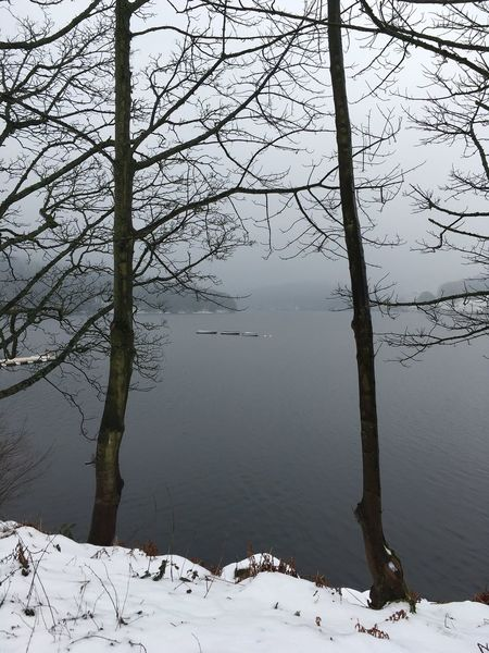 Beauty In Nature Grey Skies Winter Ladybower Reservoir Boats On Water Tree Winter Nature Cold Temperature Bare Tree Tranquility Snow
