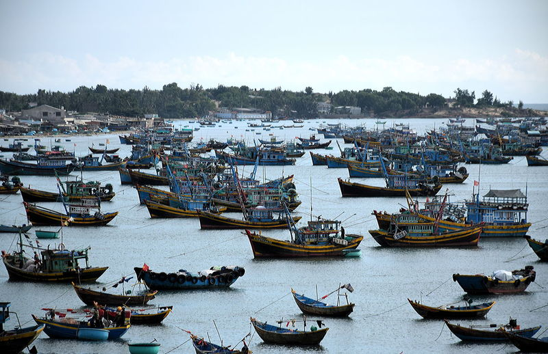 Fishing boats at dusk in the bay of Mui Ne, South Vietnam Asian Junks Blue Hour At Harbor Boats At Sunset  Boats In Harbor Day Fishing Boats Vietnam House Boats Lifestyles Nautical Vessel Outdoors People Sailboat Sailing Sea Transportation Water Yacht Yachting
