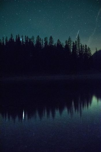 Star - Space Night Astronomy Constellation Star Field Reflection Lake Beauty In Nature Space Nature Nikond3300 Langzeitbelichtung Longtimeexposure EyeEm Nature Lover BestofEyeEm Clear Sky Sky Green Lake Tranquil Scene Scenics Symmetry Galaxy Wilderness Area Tree
