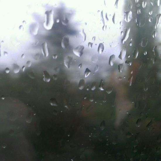 Raindrops No Filter Macro