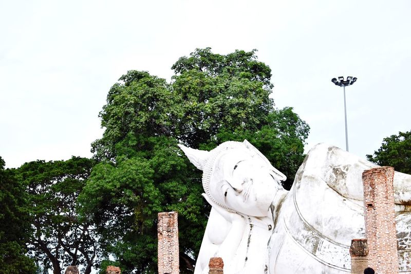 Sculpture Statue Tree Sky Religion No People Day Outdoors Nature Temple Buddha Temple Buddha Statue Big Buddha, Thailand Recluse Buddism