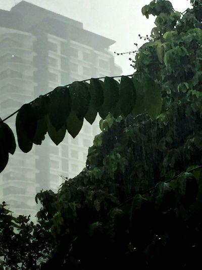 It's pouring! Rainy Days Iloveit ♥
