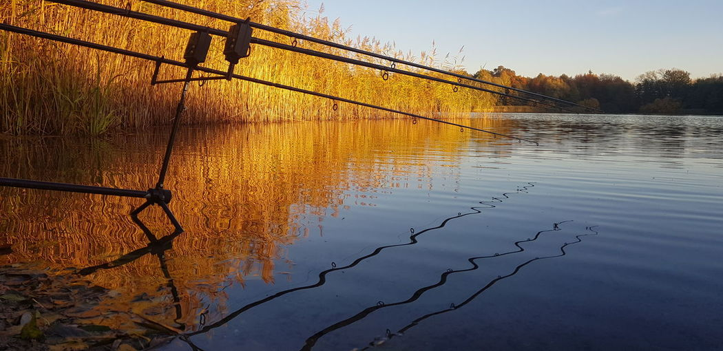 Gone Fishing Fishing Autumn colors Beautiful Nature Water Sunset Reflection Sky Fishing Rod Lake