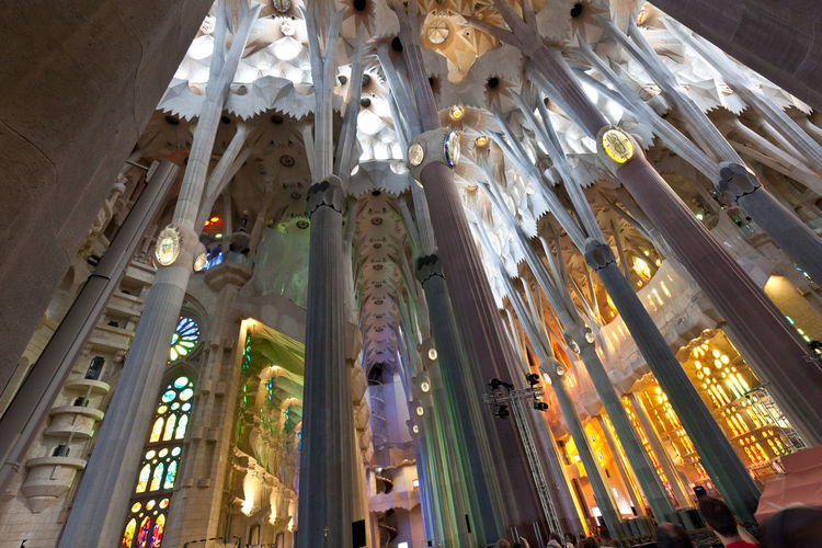Artistic Barcelona Barcelona, Spain Church SPAIN Travel Architecture Church Architecture Detail Indoors  Religion Religion Architecture Sagrada Familia Sagradafamiliabarcelona
