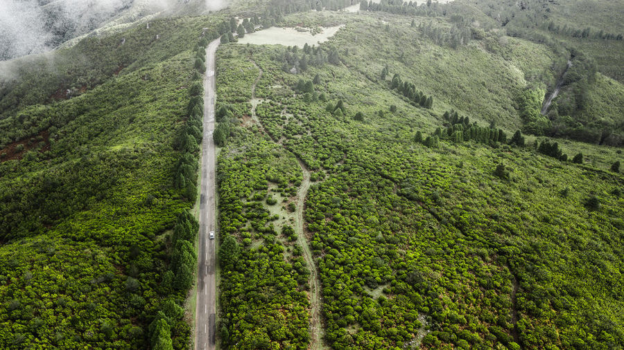 Drone aerial view of road through the green autumn forest. Drone  Drone Photography DJI Mavic Pro DJI X Eyeem Madeira Island Aerial View Aerial Shot Aerial Photography Aerial Landscape Backgrounds Beauty In Nature High Angle View Road Mountain Rural Scene Travel Destinations Tourist Attraction  Tourist Destination Nature Tropical Climate Landscape Environment Car Adventure Tranquility
