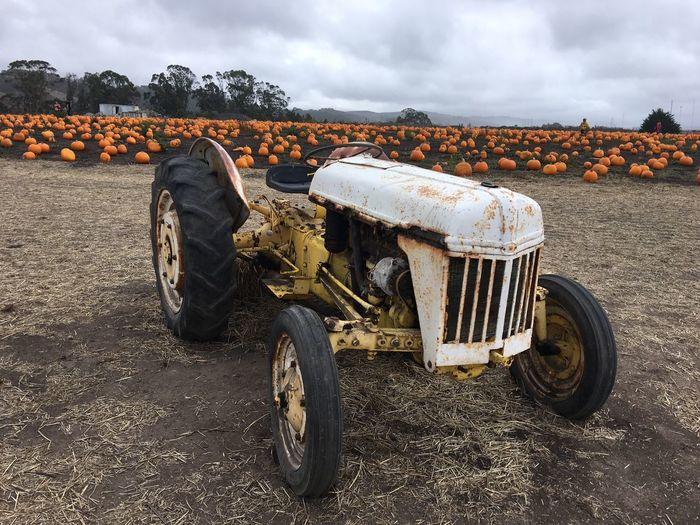 Tractor Autumn Fall2016 California Coast HalfMoonBay Pumpkin October October2016 Pumpkin Patch Cloud