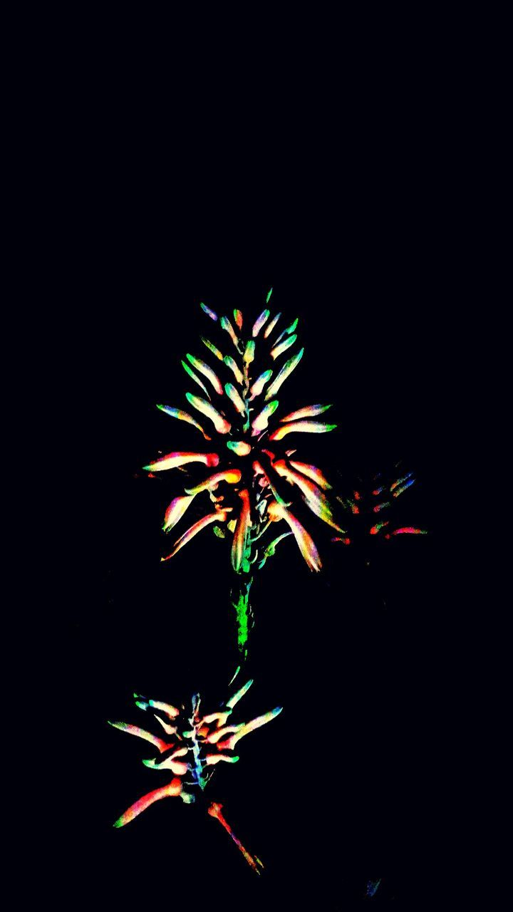 night, celebration, arts culture and entertainment, low angle view, illuminated, no people, black background, multi colored, outdoors, close-up