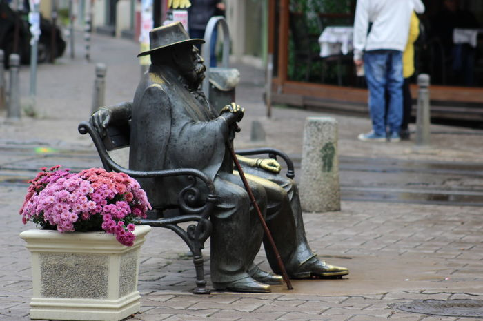 Art Bench City City Life Day Flower Flowers Focus On Foreground Freshness Gray Man Outdoors Person Pink Color Potted Plant Scupture Sitting Street Street Photography