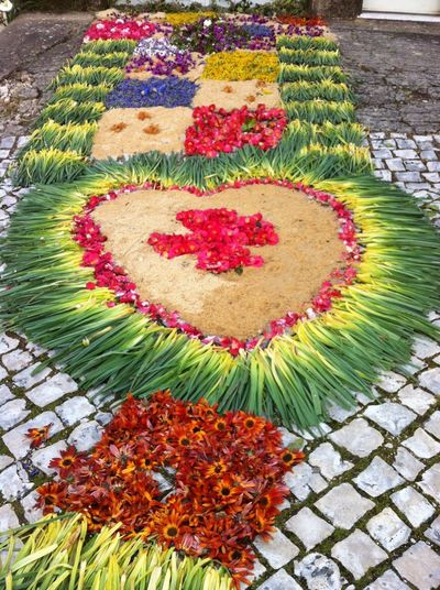 Fresh flowers used for floral pavement art Floral Art Flower Pavement Art Fresh Flowers Flower Flower Head High Angle View Outdoors Pavement Art