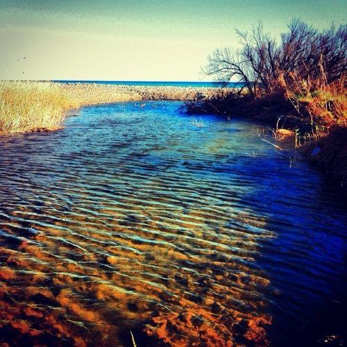 Desembocadura De La Riera De Riudecanyes