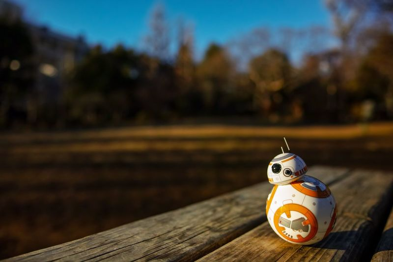 Sphero Spherobb8 BB-8 Star Wars Taking Photos Eye4photography  From My Point Of View The Week On EyeEm Focus On Foreground Wood - Material No People Day Close-up Outdoors Anthropomorphic Face
