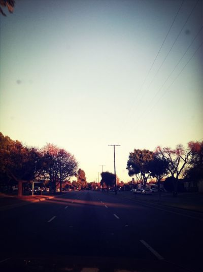 Palo Verdes Ave