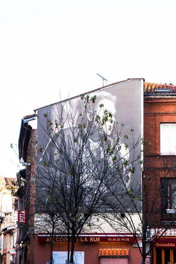 Nougaro Singer  Nougaro Built Structure Tree Day Abandoned Outdoors