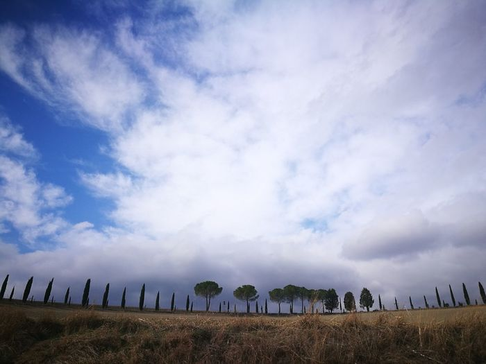 Cloud - Sky Dramatic Sky Rural Scene Storm Cloud Beauty In Nature Malinchonic Landscape Autumn🍁🍁🍁 Toscana ITALY Smartphone Photography