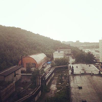Дождливо  Владивосток