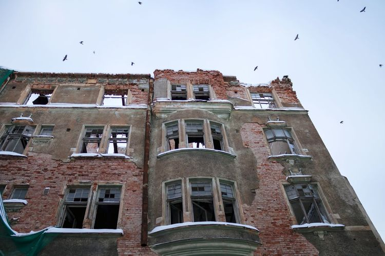 Abandoned Abandoned Buildings Empty Places Empty Windows Life And Death Lifestyles Bird Residential Building Architecture Sky Building Exterior Built Structure Flock Of Birds Spread Wings Historic Flying