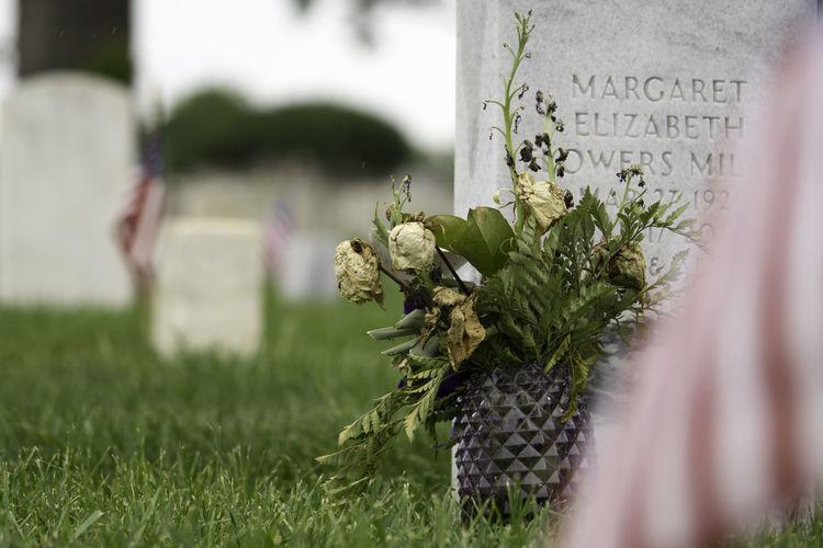 Memorial Memorial Day Decaying Flowers Gravestone Remember Remembering Remembrance