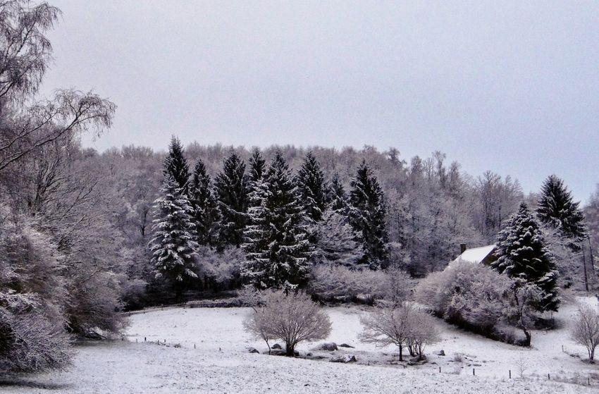 Landscape Snow Walking Limousin France