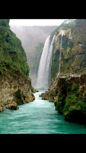 CascadaDeTamul Xilitla Beautiful Nature Waterreflections  Visit Mexico Mi Mexico Querido 💜