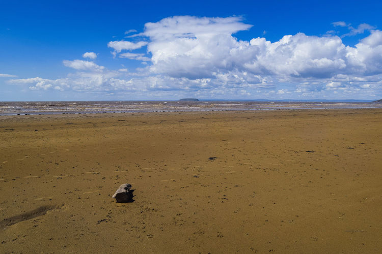 Sky Land Beach Sea Cloud - Sky Water Sand Scenics - Nature Beauty In Nature Tranquil Scene Tranquility Nature Day Outdoors Beach Photography Horizon Space For Text Space For Copy