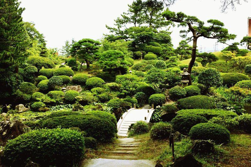 YAMAGATA SAKATA Japan Gardenapark Japanese Garden Garden