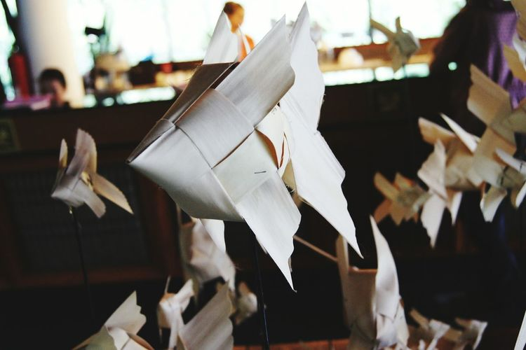 Close-up of paper hanging on table