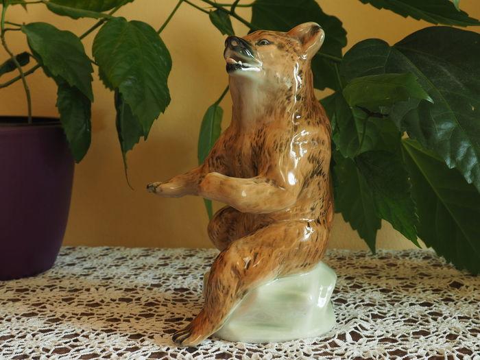 China Bear Heritage From My Grandma Knick Knacks Knick-knack Of My Grandma Knick-knacks Lieblingsteil My Favorit Knick-knack Porcelain Bear
