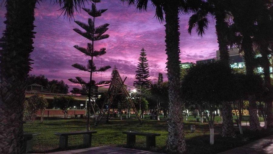 First Eyeem Photo Chiclayo Pimentel Lambayeque Perú ❤ Peru Uss Sipan University Campus Universidad Campus