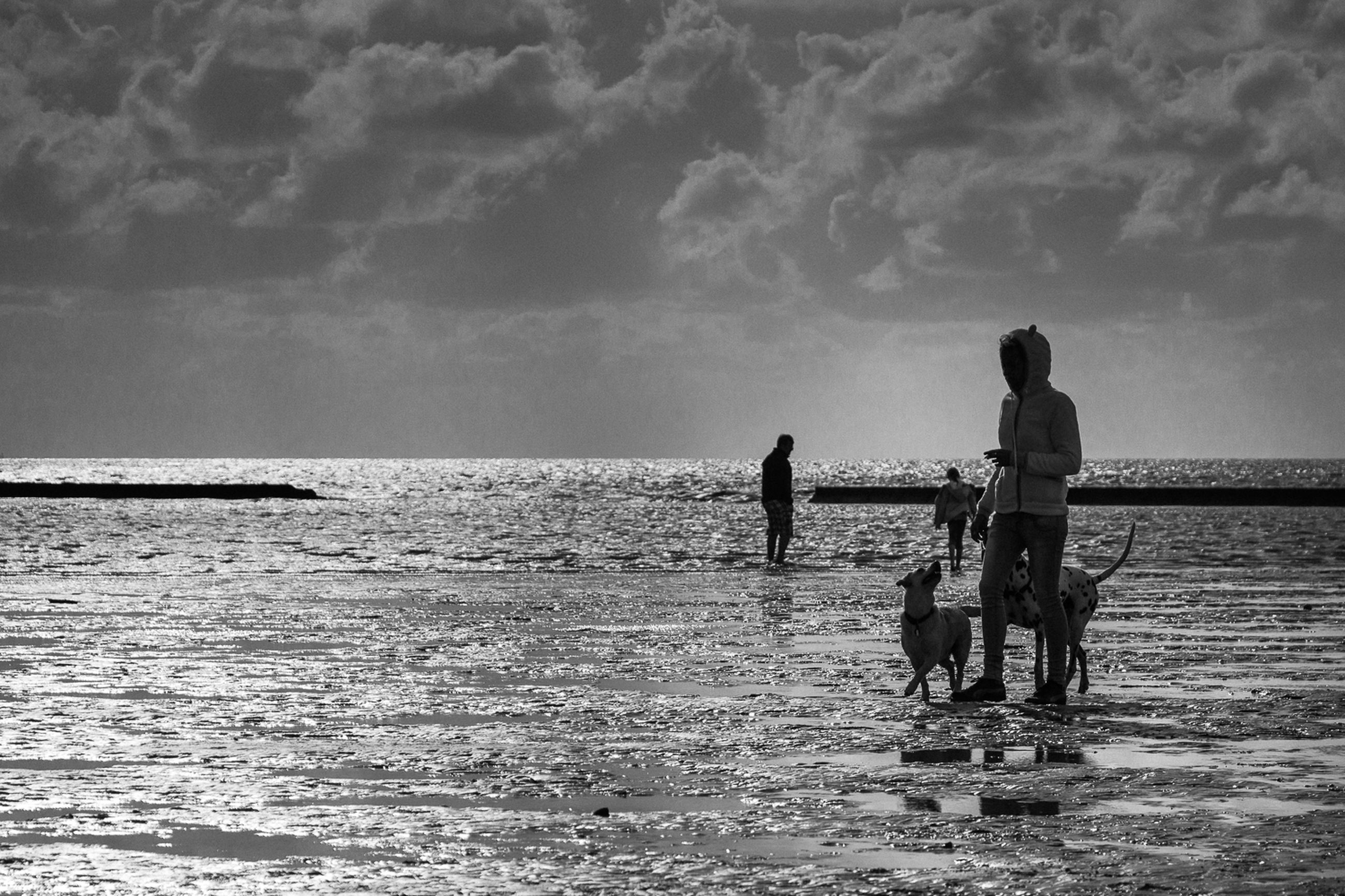 sea, togetherness, two people, water, horizon over water, leisure activity, real people, friendship, nature, sky, sitting, lifestyles, men, love, full length, bonding, dog, day, outdoors, standing, vacations, women, beach, scenics, beauty in nature, pets, domestic animals, mammal, people