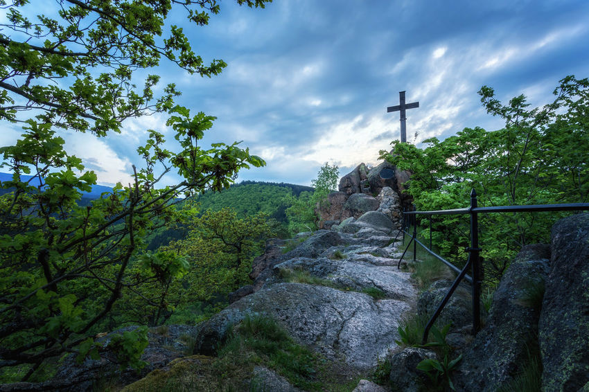 Ilsestein mit Gipfelkreuz Cross EyeEm Best Shots EyeEm Nature Lover EyeEm Selects GERMANY🇩🇪DEUTSCHERLAND@ Hiking Landscape_Collection Beauty In Nature Cloud - Sky Day Harz Harzmountains Ilsenburg Ilsestein Low Angle View Mountain Nature No People Outdoors Scenics Sky Travel Destinations Tree